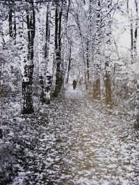 Tolstoï dans les bois